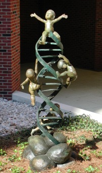 The Ladder, 2003